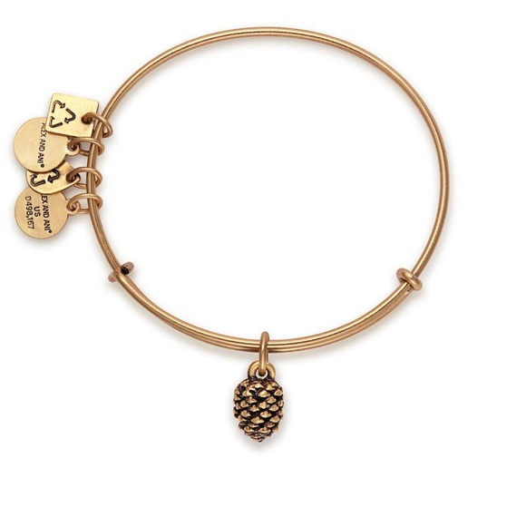 Alex and Ani Jewelry - Alex & Ani Gold Pinecone CharmBracelet